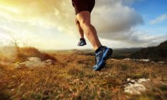 Christopher McDougall: Zijn we gemaakt om te hardlopen?